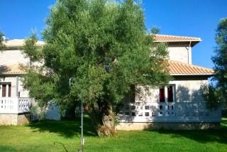olive-stone-villas-lefkas-28